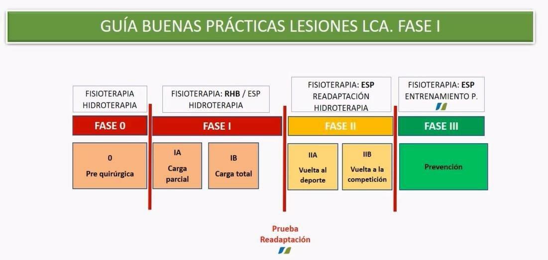 Guía buenas prácticas lesiones ligamento cruzado anterior fase I
