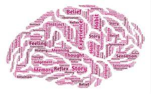 ICTUS: ¿Cómo tratarlo? La importancia de la fisioterapia neurológica