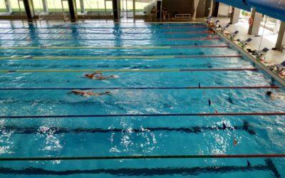 concentración- equipo-nacional-natación-junior