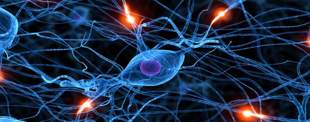 ¿Qué es el dolor neuropático (DN)?