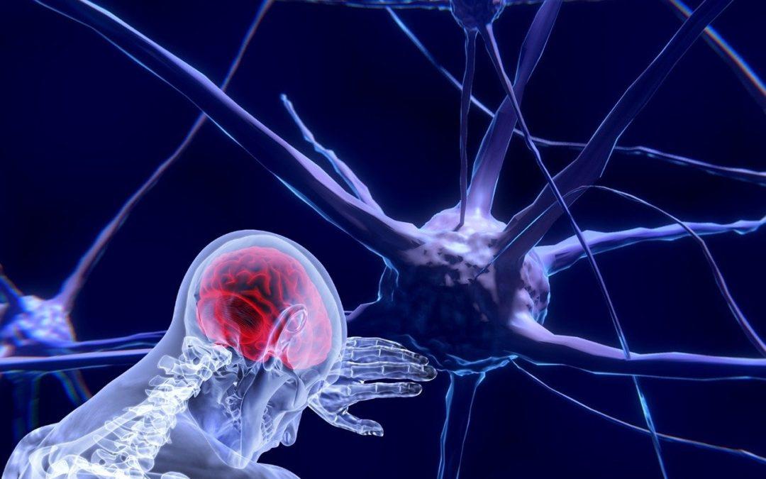 Neuroplasticidad y aprendizaje motor tras un daño cerebral sobrevenido